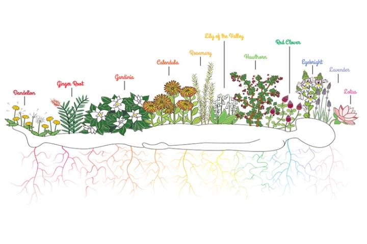 Savasana Chakra GardenBlog